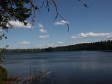 Remote Pond
